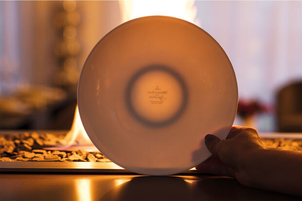 Demonstrating the translucent feature by holding a bone china plate in front of bright light