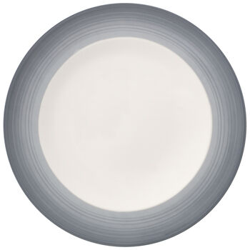 Colorful Life Cosy Grey Dinner Plate 10.5 in