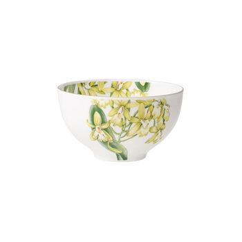 Amazonia Bowl