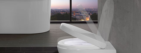 Brilliant Toilet Seats With With Soft Closing Function Villeroy Boch Com Alphanode Cool Chair Designs And Ideas Alphanodeonline